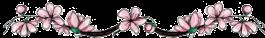 Cherry-blossom-divider