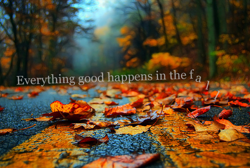 Everything good happens in the fall