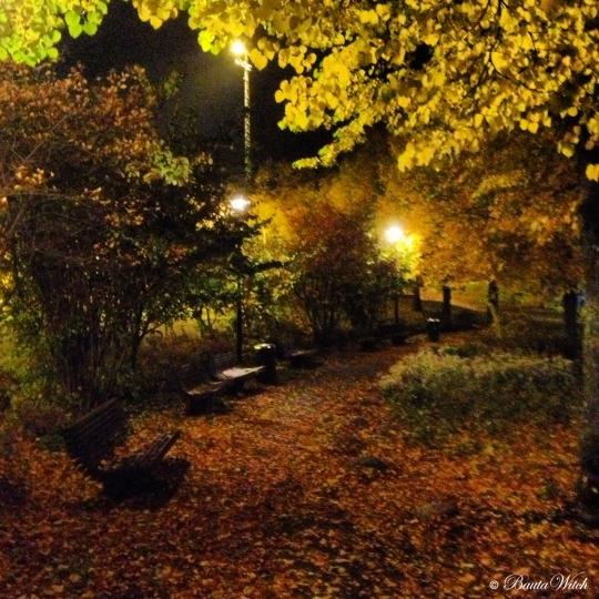 Kvällspromenad i Skytteholmsparken