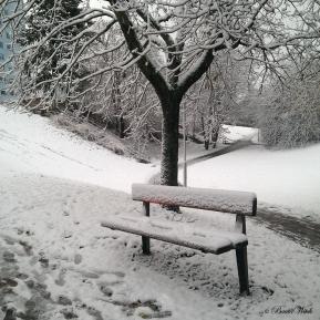 Årets första snö, Blåkulla 121129