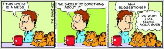 Garfield - a mess