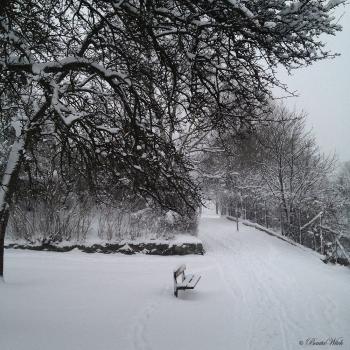 Vinter på Blåkulla