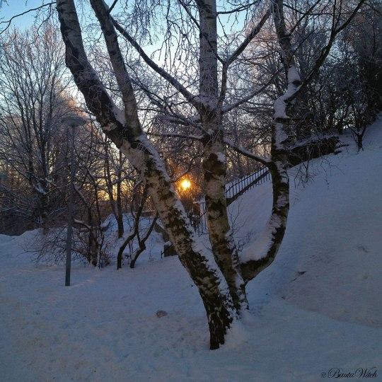 Kall vintermorgon på Blåkulla