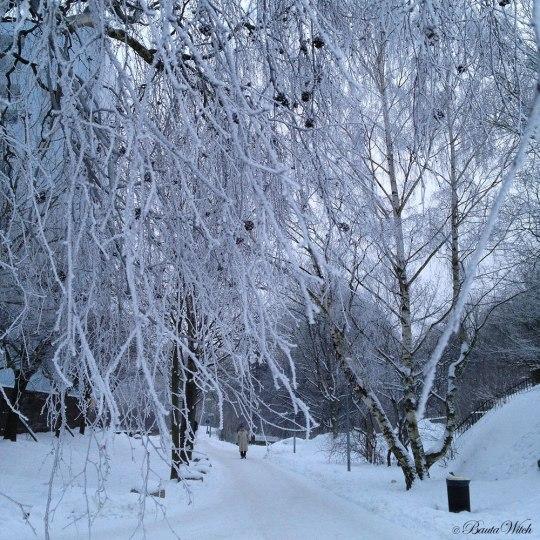 Vackert grenverk på Blåkulla