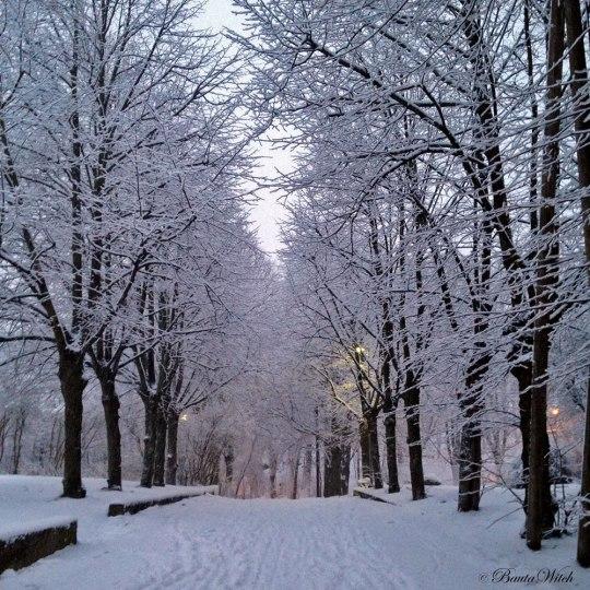 Vinterdag på Blåkulla