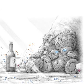 Tatty Teddy cozy pique nique