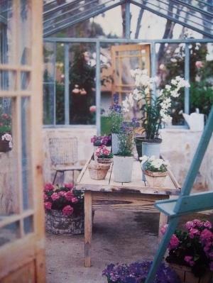Inuti mitt växthus