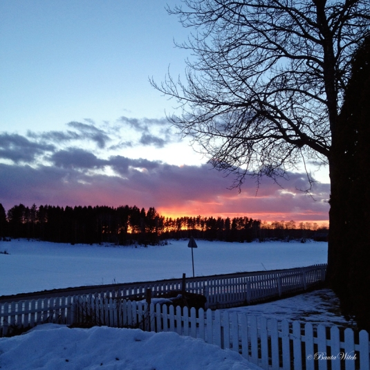 Vinter i Björkvik by BautaWitch