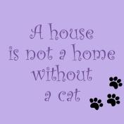 quote-cat