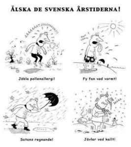 Svenska arstider