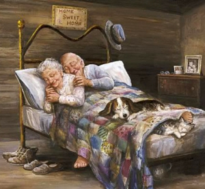 mysigt gammalt par