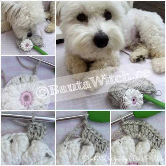 How-to-step-1-Daisy-hexagons-by-BautaWitch
