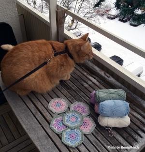 """Firre deltar i min """"fotosession"""" på balkongen."""