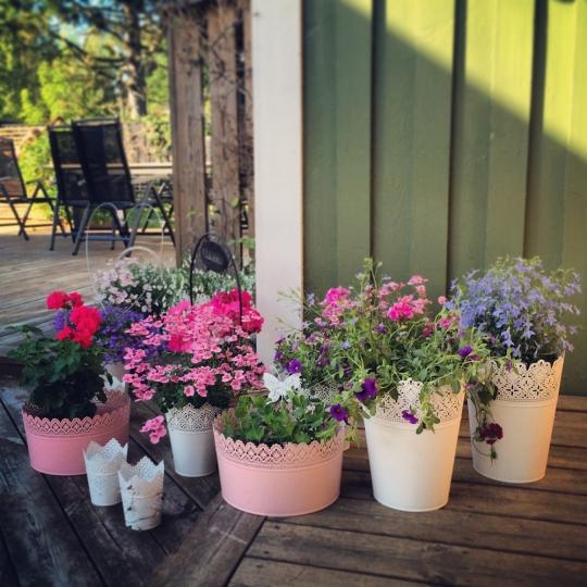 massage odenplan rosa sidan göteborg