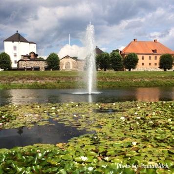 Näckrosor vid Nyköpingshus