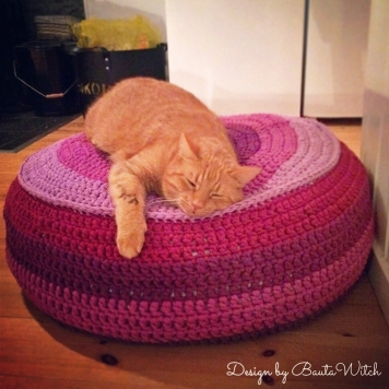 Red-cat-on-Zpagetti-pouf-by-BautaWitch